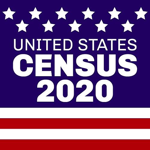 census 2020 2
